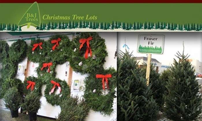53% Off at B & J Trees - 53% Off At B & J Trees - B&J Trees Groupon