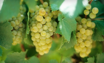 Gregory Vineyards: Wine-Tasting Outing for 2 (a $74 total value) - Gregory Vineyards in Angier