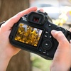 Up to 52% Off a Digital-Photography Workshop