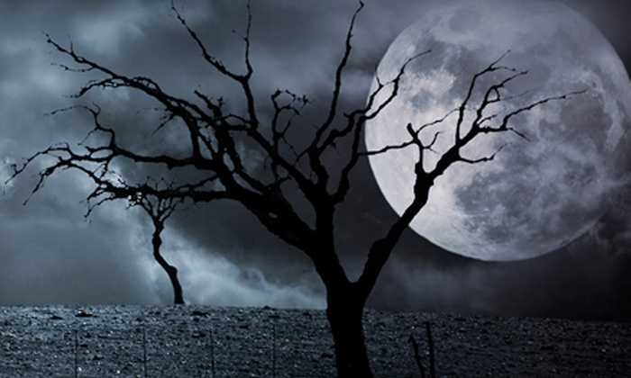 Find Your Fear - Radisson Heights - Albert Park: Adult VIP Ticket to Haunted-House Experience at Find Your Fear. Multiple Dates Available.