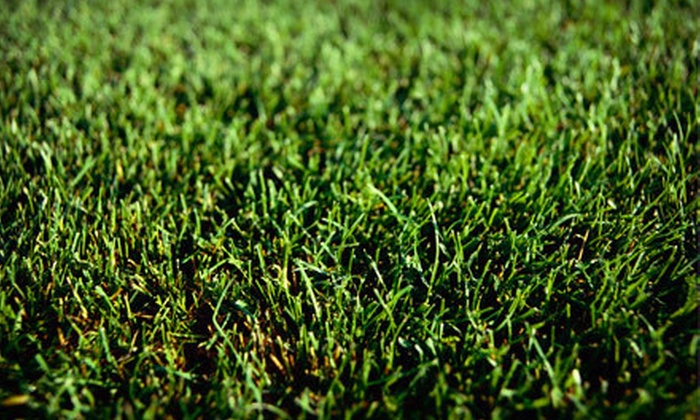 Uptown Lawn & Snow - Minneapolis / St Paul: $49 for Lawn Aeration for Up to 6,000 Square Feet from Uptown Lawn & Snow ($100 Value)