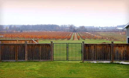 1-Night Stay for Two and an Overnight in Wine Country Tour Package for Two - Crush on Niagara Wine Tours in Beamsville