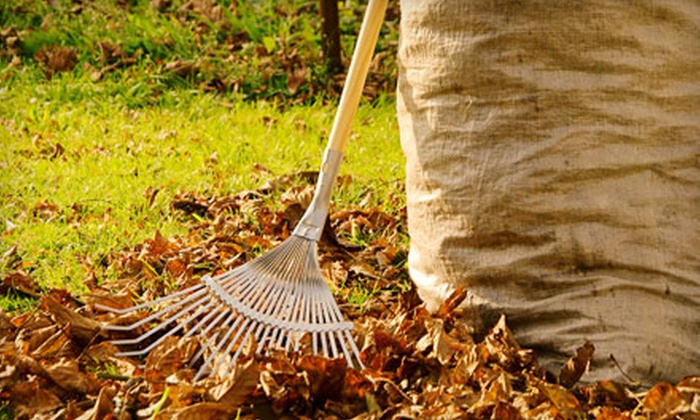 Redbeacon - Multiple Locations: $29 for $100 Worth of Yard Work, Cleaning, and Other Home-Improvement Services from Redbeacon