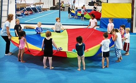The Gym-Nest: 1-Month of Boys' or Girls' Beginning or Intermediate Gymnastic Classes Once a Week - The Gym-Nest in Hillsboro