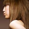 Half Off Haircut at Lady Godiva Hair Studio