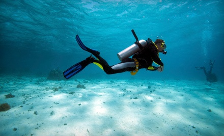 Three-Hour Discover Scuba Course (a $35 value) - Aquatic Adventures of Michigan in Brighton