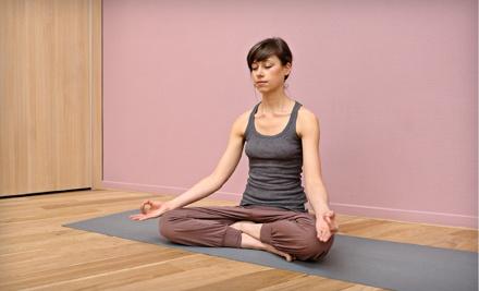 Ahimsa Yoga Studio - Ahimsa Yoga Studio in Oak Park