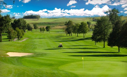 Weekday Golf Outing for 1, Valid Mon.-Fri. before 6PM (a $63 value) - Stone Creek Golf Course in Williamsburg
