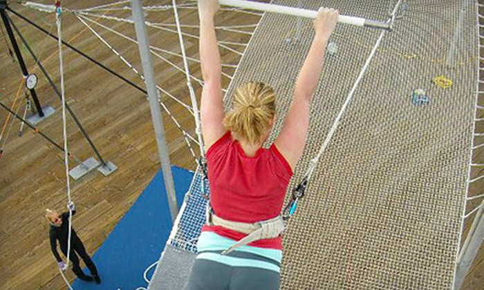 Trapeze School New York - Santa Monica: Two-Hour Flying Trapeze or One-Hour Silks or Trampoline Class at Trapeze School New York in Santa Monica
