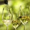 Half Off Two Wine Festival Tickets in Vermillion