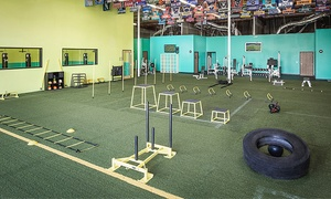 York's Core & Fitness: One-Month Elite Gym Membership at York's Core & Fitness (Up to 50% Off)