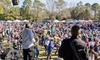 Hilton Head Island Seafood Fest - Shelter Cove Community Park: Hilton Head Island Seafood Fest on Saturday, March 5, at 11 a.m.