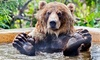 BC Wildlife Park Kamloops - Campbell Creek: Admission for Two Adults or Two Adults and Three Children at BC Wildlife Park (Up to 36% Off)