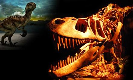 Dinosaur Quest  - Dinosaur Quest in San Antonio
