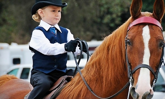 Golden Ridge Stables - Gilroy: One-Hour Introductory Horse-Riding Lesson or Five-Lesson Package at Golden Ridge Stables in Gilroy