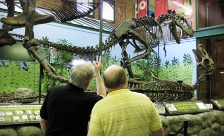 Senior Couple 1 Year Membership for 2 Adults Aged 60 or Older (a $42 value) - Museum of World Treasures in Wichita