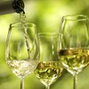 Half Off a Ticket to Wine-Tasting Event