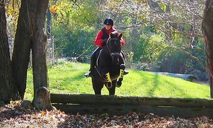 WillowMay Farm - Newtown Square: $69 for Two Private Horse-Riding Lessons at WillowMay Farm in Newtown Square ($160 Value)