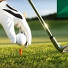 Up to 74% Off at Greenfield Lakes Golf Course