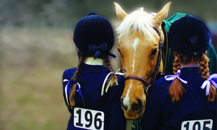 Windwood Equestrian - Alabaster-Helena: $45 for Couples Riding Lesson & Wine ($100 Value) or $20 for Group Riding Lesson ($50 Value) at Windwood Equestrian in Pelham