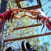 51% Off High-Ropes Adventure in Nine Mile Falls