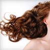 51% Off Hair Products and Services at Bella Luna Salon