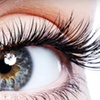 Up to 68% Off Eyelash or Eyebrow Services in Millbrae