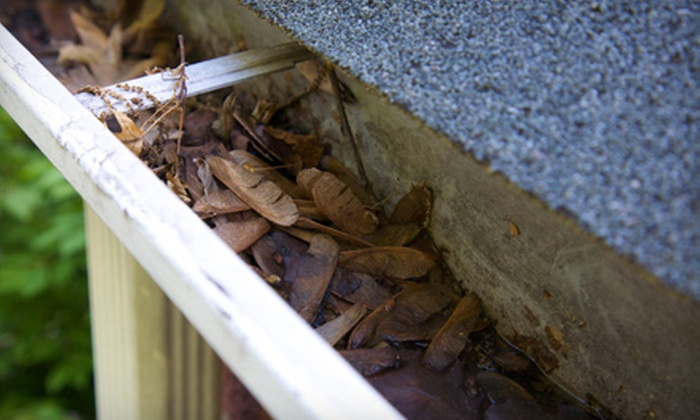 Outdoor Oasis - Knoxville: Gutter-Cleaning Services for a Small, Medium, or Large Roof from Outdoor Oasis (Up to 64% Off)