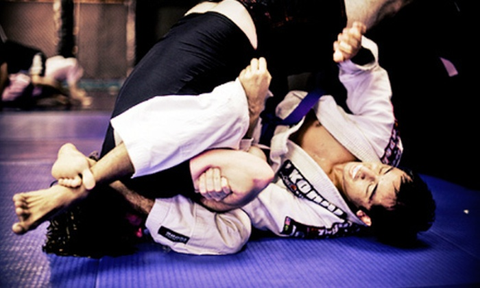 Relson Gracie Jiu-Jitsu - St. Augustine: 10 or 20 Drop-In Classes at Relson Gracie Jiu-Jitsu St. Augustine (Up to 85% Off)