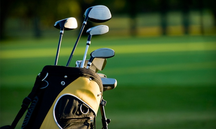 Sure Shot Golf Lab - White House: Custom Club Fitting at Sure Shot Golf Lab in Cottontown. Two Options Available.