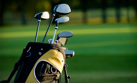 Sure Shot Golf Lab: Driver or Iron Custom Fitting  - Sure Shot Golf Lab in White House