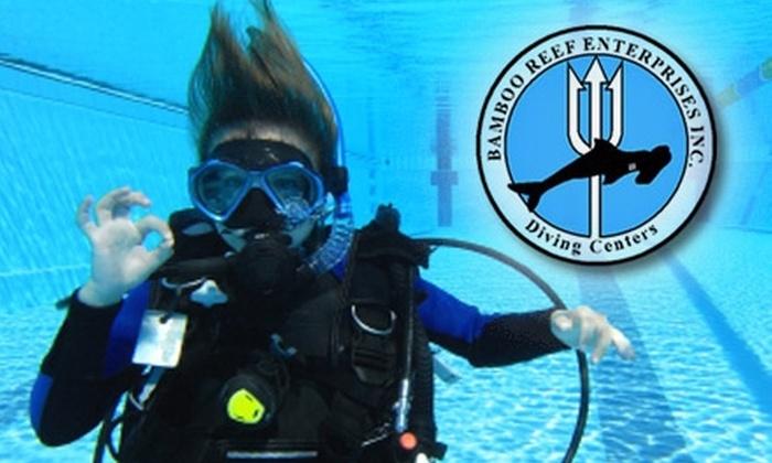 Marin Bamboo Reef - San Rafael: $25 Scuba-Diving Lesson at Marin Bamboo Reef in San Rafael ($50 Value)