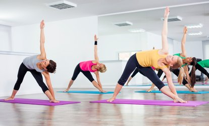 image for Up to 87% Off  yoga or pilates classes at Ron Zalko Fitness and Yoga