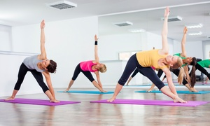 Ron Zalko Total Body Fitness and Yoga: Up to 91% Off  yoga or pilates classes at Ron Zalko Total Body Fitness and Yoga