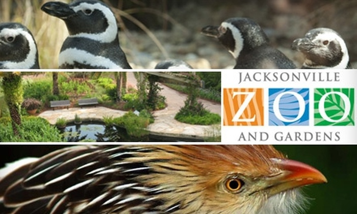 Active Jacksonville Zoo Coupon Codes & Deals for October 12222