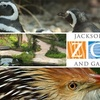 $6 for Jacksonville Zoo Admission