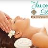54% Off Organic Oasis Body Treatment