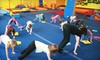 Gymalaya Inc - Multiple Locations: Two Days of Children's Fitness Camp at Gymalaya. Two Locations Available.