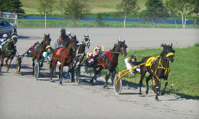 St. Johns Racing and Entertainment Centre - Goulds: Horse-Racing Outing for Two or Four at St. Johns Racing and Entertainment Centre in Goulds (Up to 67% Off)