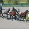 Up to 67% Off Horse-Racing Outing in Goulds