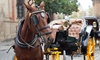 St. Augustine Attractions Center - Old City: Historic Carriage Tours for Two or Four from St. Augustine Attractions Center (Up to 53% Off)