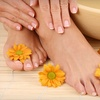 Up to 57% Off Spa Services in Coral Springs