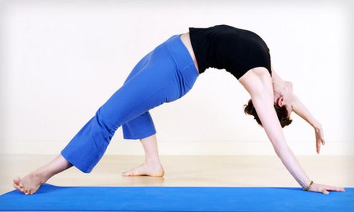 Pura Vida Wellness Spa - Pinellas Park: $40 for 10 Yoga Classes at Pura Vida Wellness Center in Pinellas Park ($90 Value)