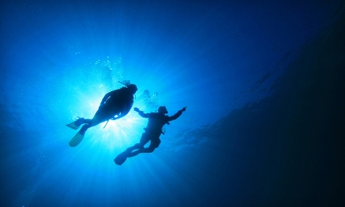 East Coast Divers - Brookline Village: $30 for a Try Scuba Lesson for Two People with East Coast Divers in Brookline