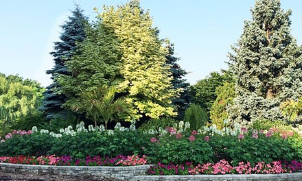 $109 for a Two-Hour Wedding Photo Permit at Humber Arboretum ($200 Value)