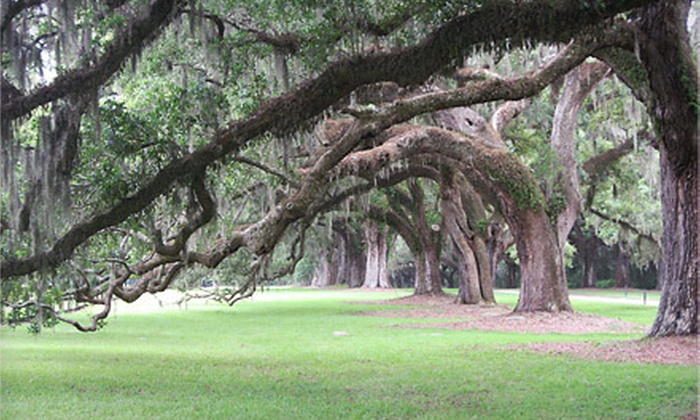 Savvy Savannah Tours - Multiple Locations: Savannah Cinema, Past, or Spiritual Walking Tour for Two or Four from Savvy Savannah Tours (Up to 51% Off)