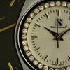 Up to 61% Off Steinhausen Watch