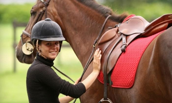Cavallo Farms - Wacissa: $75 for Three Private Horseback-Riding Lessons ($135 Value) or $125 for a Beginner Riding Camp ($200 Value) at Cavallo Farms