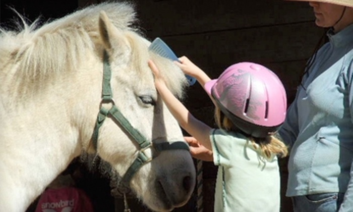 MacNair's Country Acres - Southwest Raleigh: $40 for a Group Beginners' Horse-Riding Lesson at MacNair Country Acres ($80 Value)