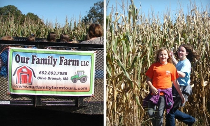 Our Family Farm - 1: $10 for Four Corn-Maze Passes at Our Family Farm ($20 Value)